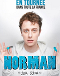 spectacle  de Norman ( Sur Scene )