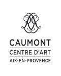Visuel HOTEL DE CAUMONT - CENTRE D'ART