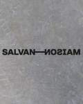 Visuel MAISON SALVAN A LABEGE