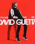 David Guetta au festival Poupet