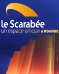 LE SCARABEE A RIORGES (ROANNE)