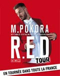 spectacle R.e.d Tour de M Pokora