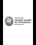 Visuel GRANDE GALERIE DE L'EVOLUTION