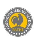 Visuel FONDATION JEROME SEYDOUX-PATHE
