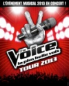 THE VOICE TOUR 2013
